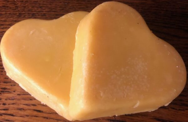 sidruniseep